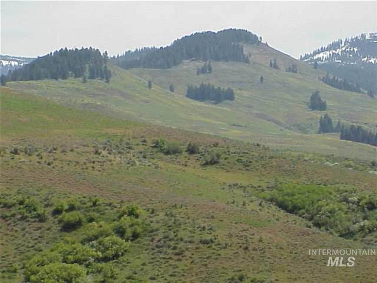 Land for Sale at Council, Idaho 83612