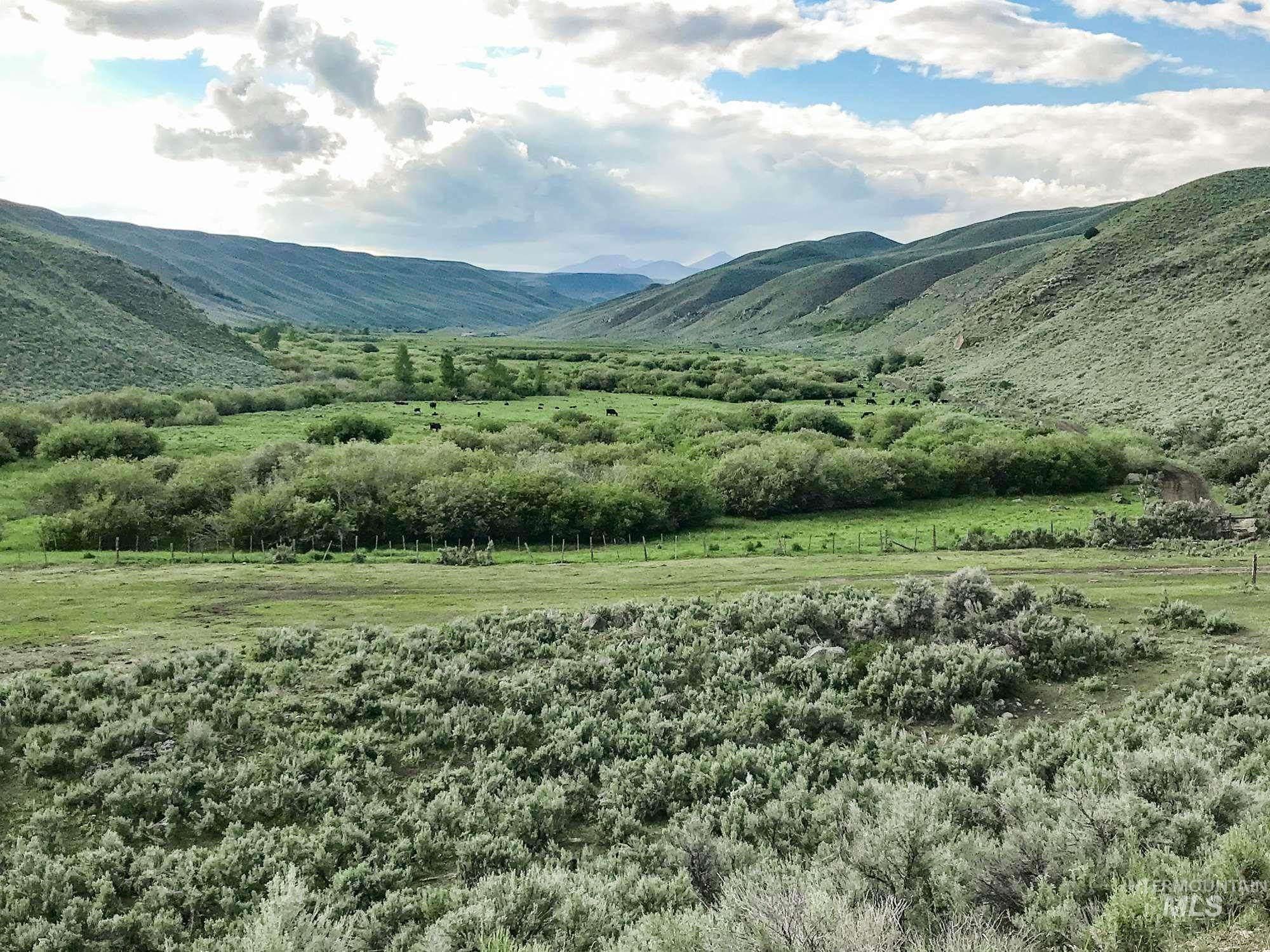 Ranch for Sale at Dubois, Idaho 83423