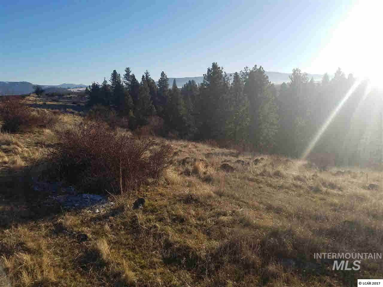 Land for Sale at Grangeville, Idaho 83530