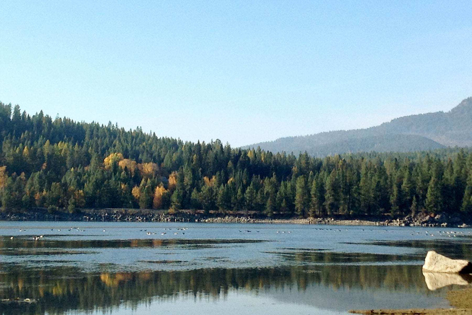 Terreno por un Venta en 28+ Acre Waterfront site Gypsy Bay Rd, 28 Acres Sagle, Idaho 83860